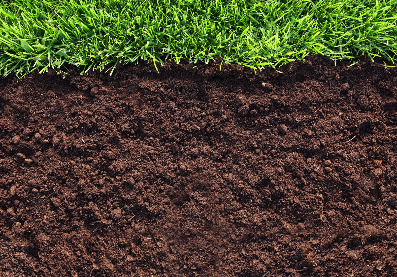 Humic fertilizers ieassaieassa for What substances are in soil
