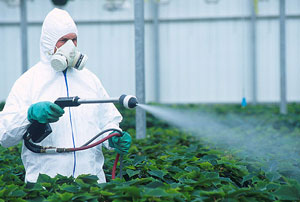 Image result for pesticides protection