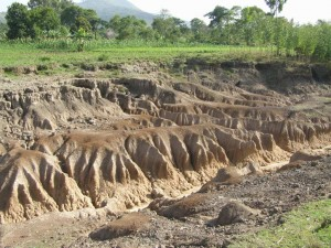 Why is soil erosion bad all about soil for All about soil
