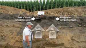controlled-traffic-soil-pit